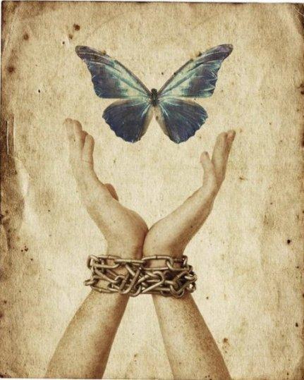 Farfalla e catene[1]